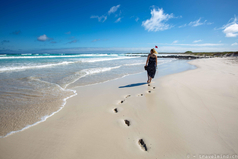 Galapagos Blog 1 (14 von 29)